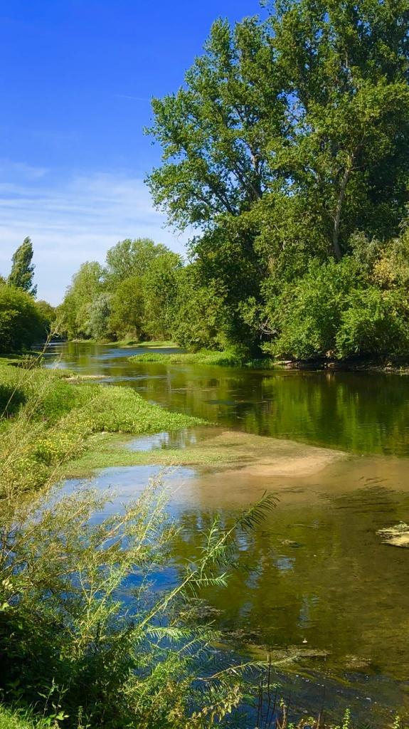 Écrivains de la Loire
